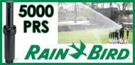 Rain Bird 5000 PRS